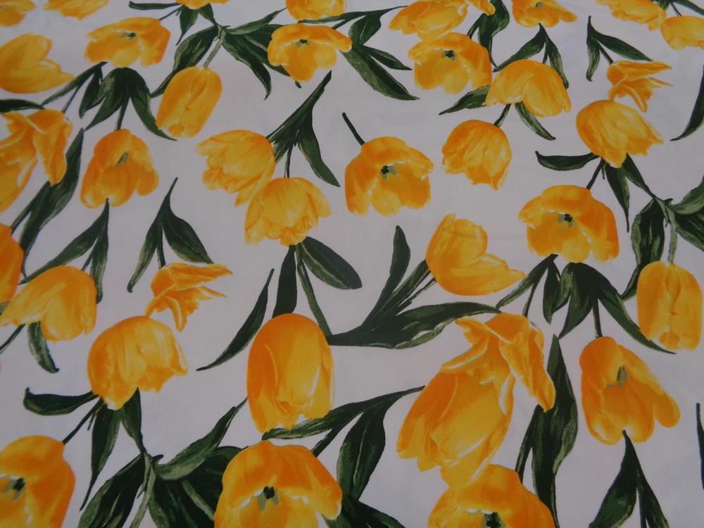 Καπαρτίνα 'Isidora' toulips yellow