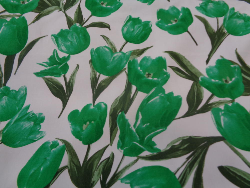 Καπαρτίνα 'Isidora' toulips green