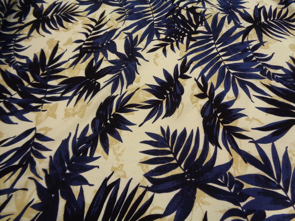 Λινάρι 'Faidra' exotica blue