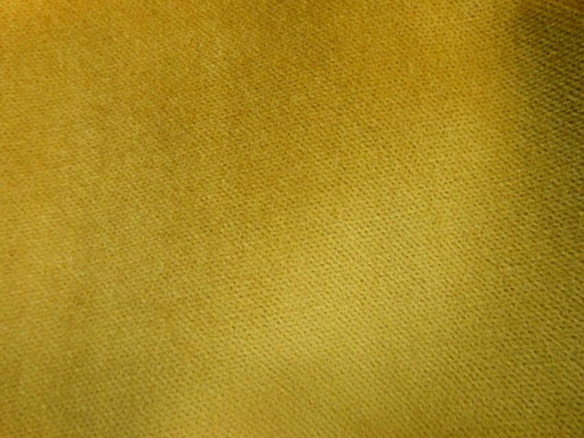 Βαμβακερό βελούδο 'Golden sun'