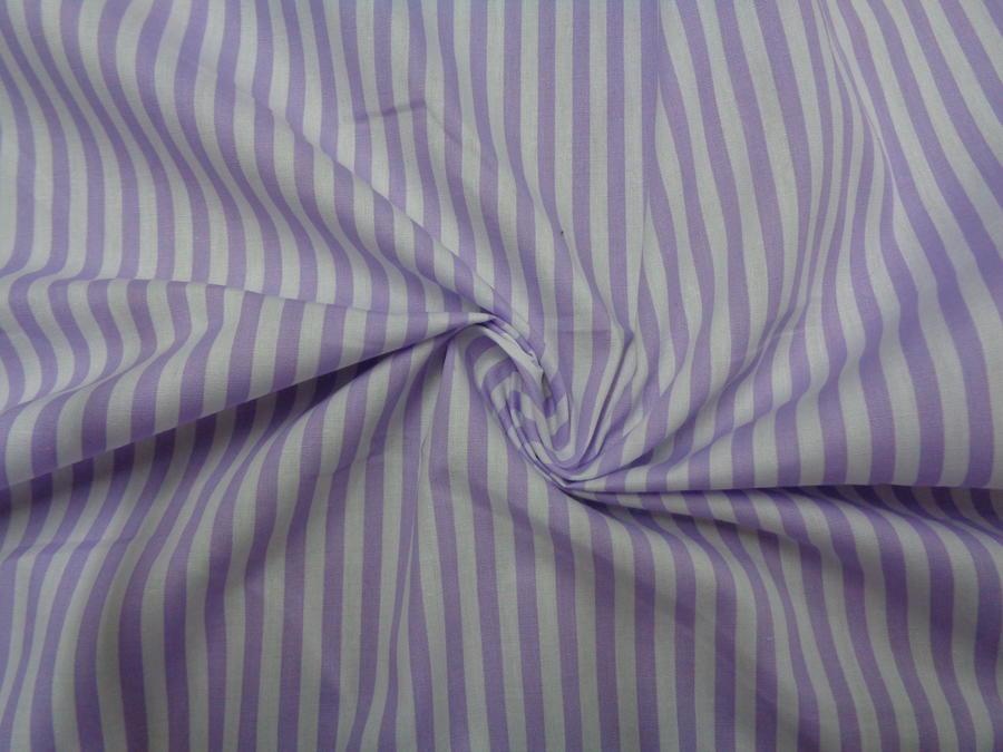 Ποπλίνα 'Anima purple'